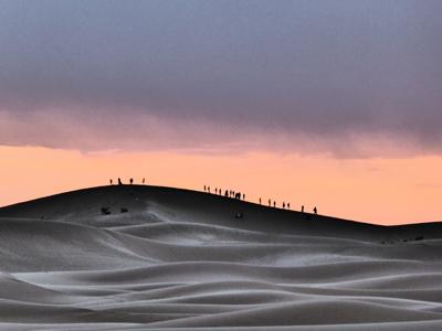 Sahara, 2015